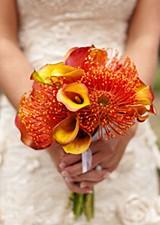 Ausstattung für Hochzeitsagenturen